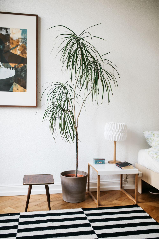 簡約現代臥室花卉擺放